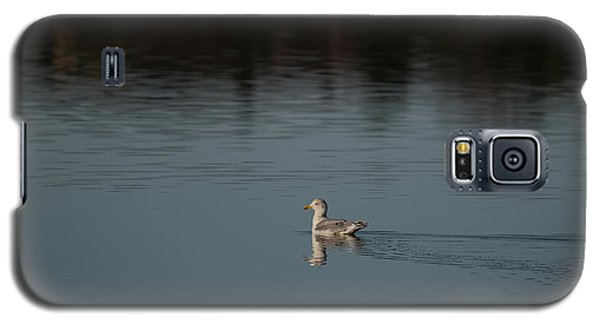 Herring Gull Galaxy S5 Case