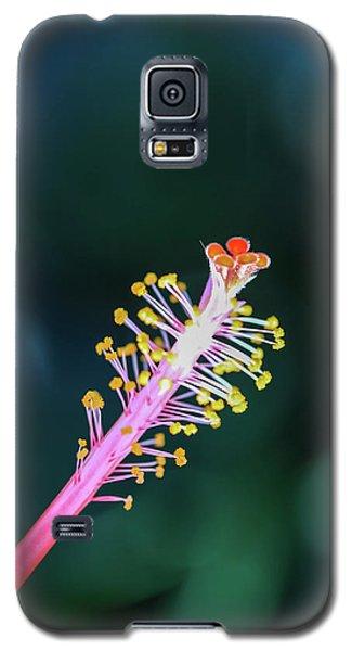 Hibiscus' Pistil Galaxy S5 Case