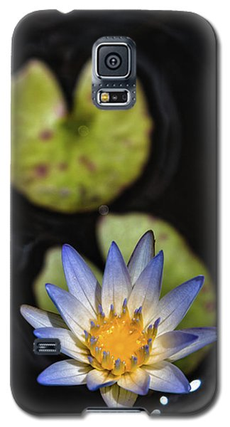 Hidden Jewel Galaxy S5 Case