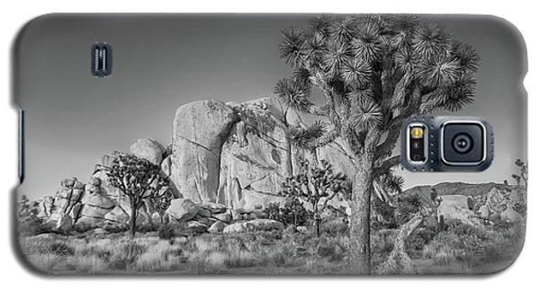 Hidden Valley Rock Galaxy S5 Case