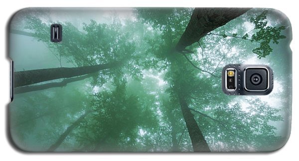 High In The Mist Galaxy S5 Case