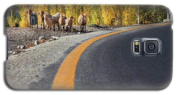 Highway Story Galaxy S5 Case
