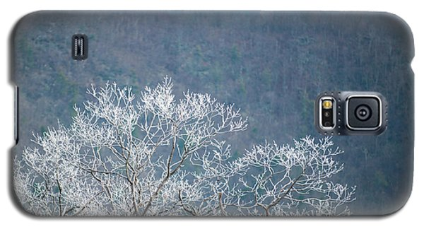 Hoarfrost Collects On Branches Galaxy S5 Case