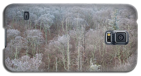 Hoarfrost In The Tree Tops Galaxy S5 Case