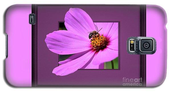 Honey Bee On Pink Galaxy S5 Case