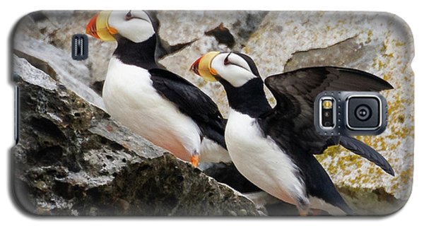 Horned Puffin Pair Galaxy S5 Case