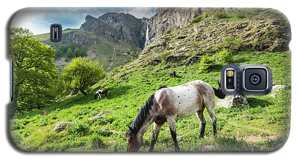 Horse On Balkan Mountain Galaxy S5 Case