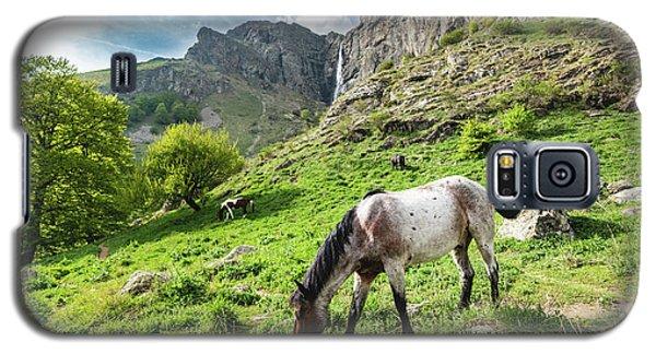 Horse On Balkan Mountain Galaxy S5 Case