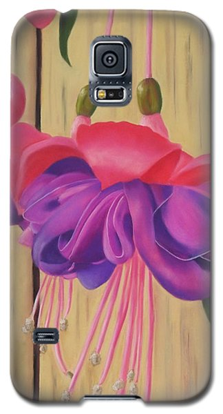 Hummingbird Delight Galaxy S5 Case