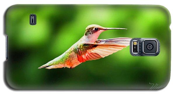 Hummingbird Flying Galaxy S5 Case