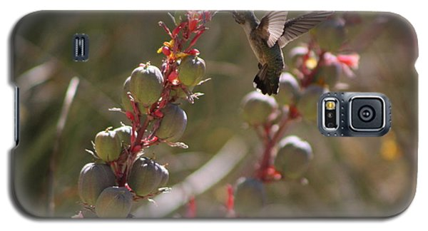 Hummingbird Flying To Red Yucca 3 In 3 Galaxy S5 Case