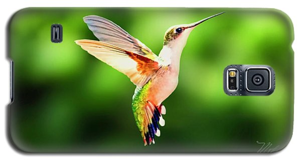 Hummingbird Hovering Galaxy S5 Case