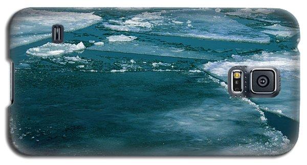 Ice 2 Galaxy S5 Case