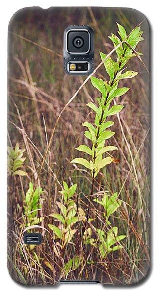 In Tall Grass Galaxy S5 Case