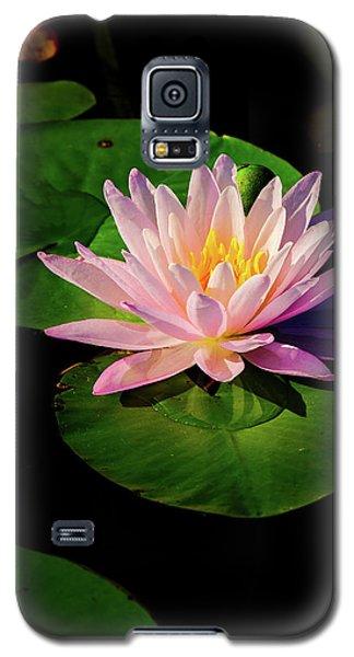In The Spotlight Galaxy S5 Case