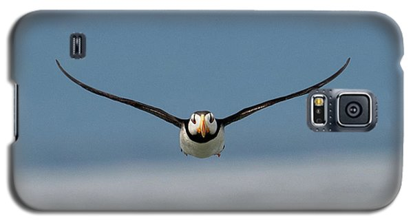 Incoming Puffin Galaxy S5 Case