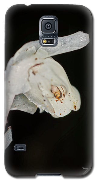 Indian Pipe Rabbit Head Galaxy S5 Case