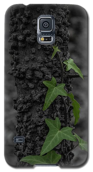 Industrious Ivy Galaxy S5 Case