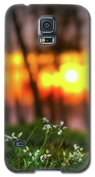 Into Dreams Galaxy S5 Case