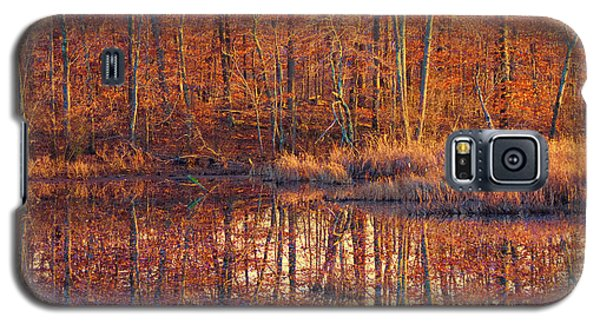 Ipswich River Wildlife Sanctuary Galaxy S5 Case