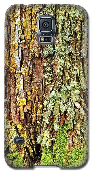 Island Moss Galaxy S5 Case