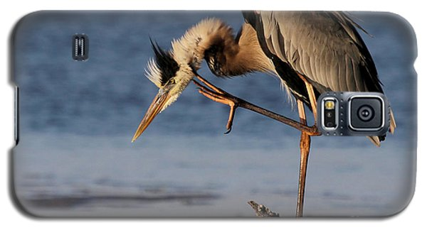 Itchy - Great Blue Heron Galaxy S5 Case