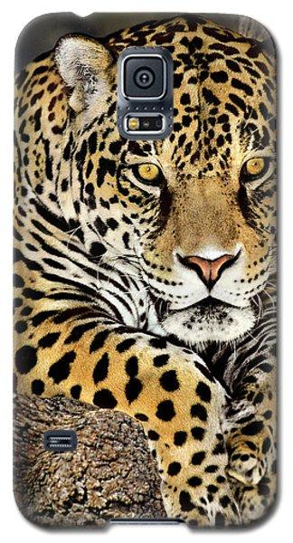 Jaguar Portrait Wildlife Rescue Galaxy S5 Case