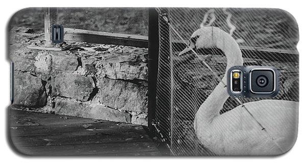Jail Galaxy S5 Case