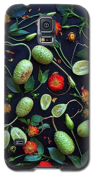 Jamaican Burr Cucumbers Galaxy S5 Case