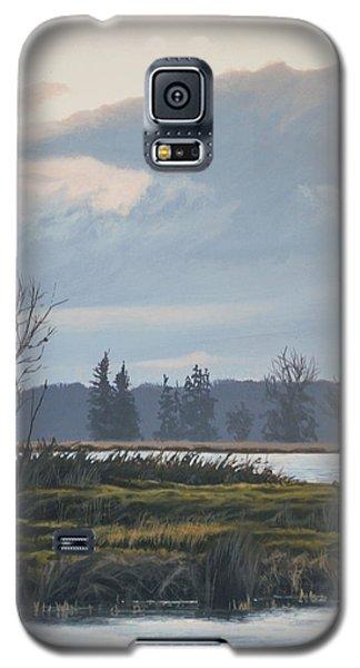 January Skies Galaxy S5 Case