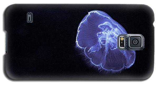 Jelly Glow Galaxy S5 Case