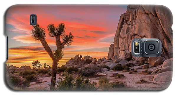 Sunset Galaxy S5 Case - Joshua Tree Sunset by Peter Tellone