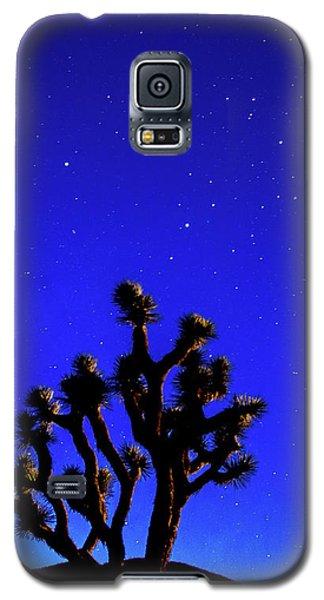 Joshua Tree Under The Stars Galaxy S5 Case