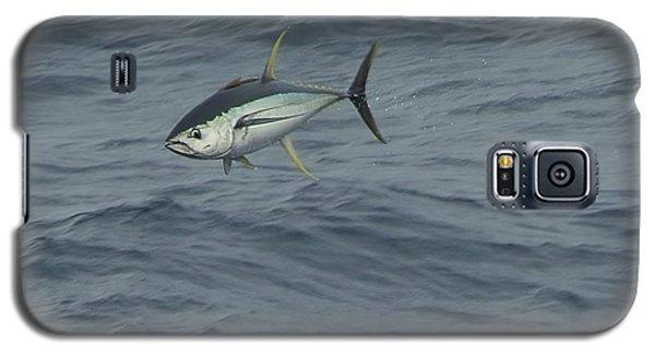 Jumping Yellowfin Tuna Galaxy S5 Case