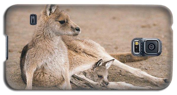 Kangaroo Outside Galaxy S5 Case