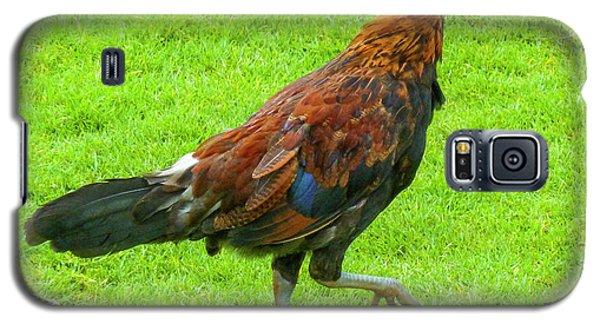 Kauai Rooster Galaxy S5 Case