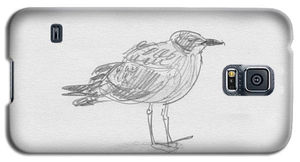Kelp Gull Galaxy S5 Case
