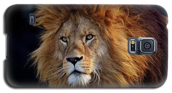 King Lion Galaxy S5 Case