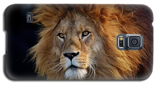 King Lion Galaxy S5 Case