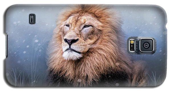 King Winter Galaxy S5 Case