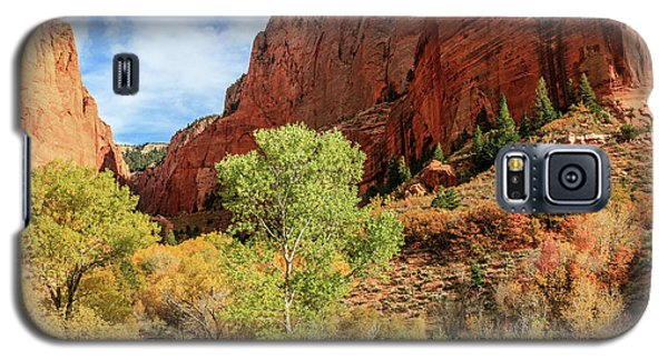 Kolob Canyon 1, Zion National Park Galaxy S5 Case