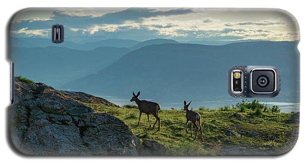 Kuipers Peak Deer Galaxy S5 Case