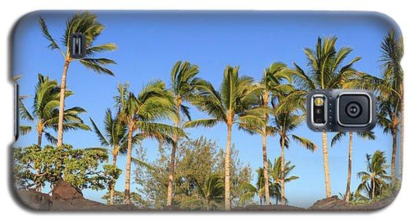 Golden Palms Galaxy S5 Case