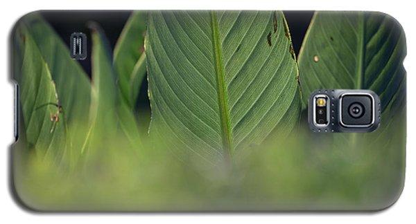 Large Dark Green Leaves Galaxy S5 Case