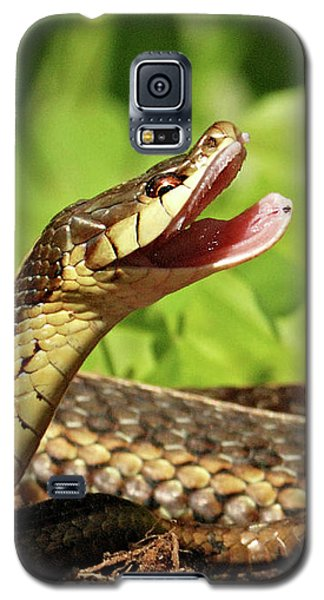 Laughing Snake Galaxy S5 Case