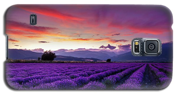 Sunset Galaxy S5 Case - Lavender Season by Evgeni Dinev
