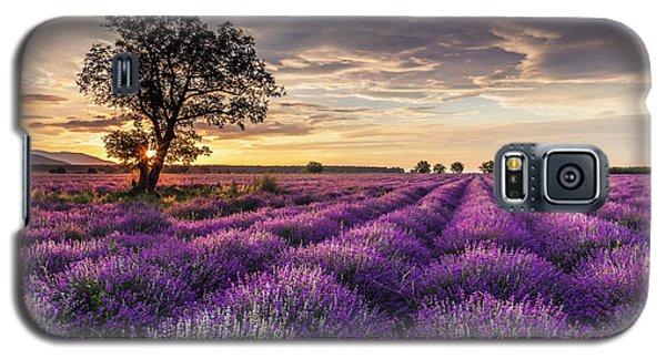 Lavender Sunrise Galaxy S5 Case