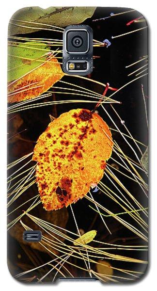 Leaf In Pond Galaxy S5 Case