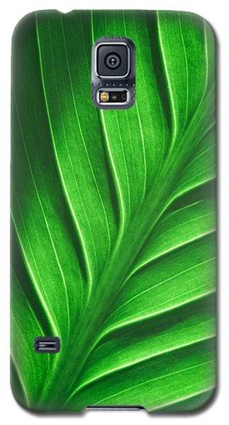 Leaf Pattern Galaxy S5 Case