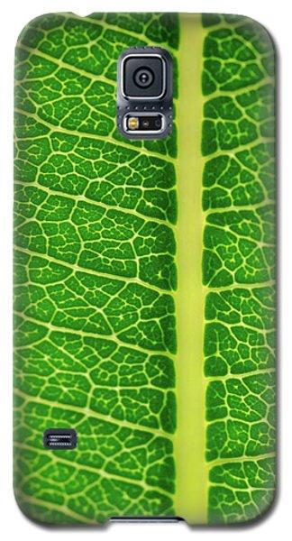 Leafy Detail Galaxy S5 Case